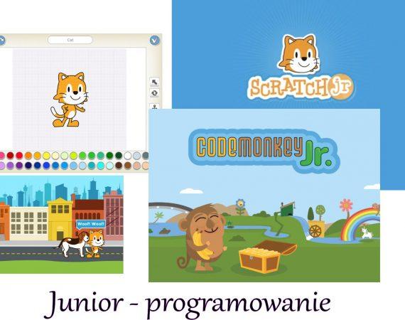 Junior programowanie